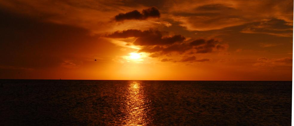 Name:  Clearwater sunset.JPG