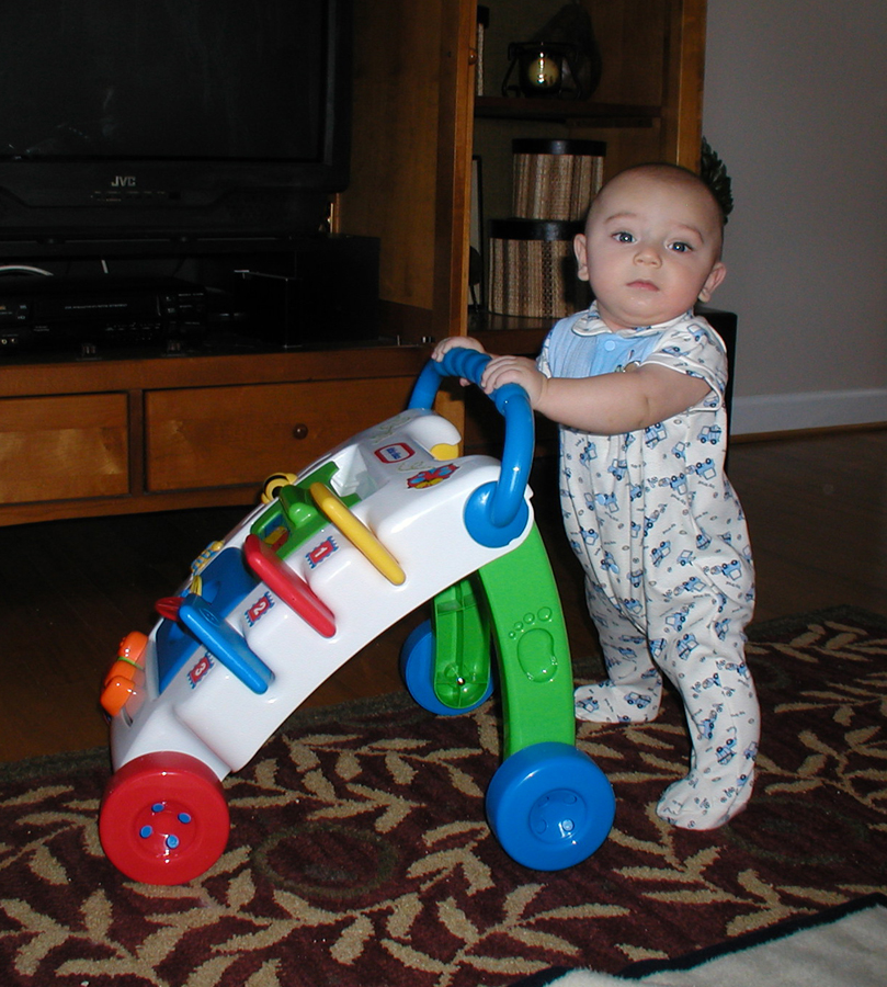 Name:  Max 5 months 1 small.jpg Views: 2174 Size:  594.8 KB